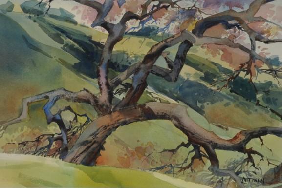 Hillside Oak-Watercolor-15 x 22