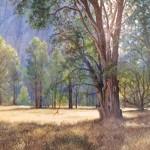 Yosemite -acrylic -12x16