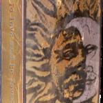 Equinox -fused glass & copper -8.5x5.25