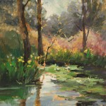 Lily Pads -Oil -20x16
